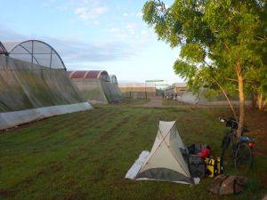 Sicherer Schlafplatz neben den staatlichen Gemüsetreibhäusern.
