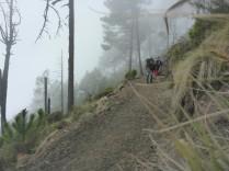 Aufstieg auf den Vulkan Acatenango.