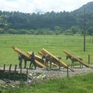 Holztransport in Kolumbien.
