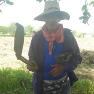 Alfonso zeigt sein Werkzeug zum Bearbeiten des Zuckerrohrfeldes.